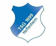 Бундеслига 2008/09. Хоффенхайм