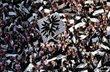 Фанаты Айнтрахта смогут посетить матч против Шахтера