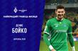 Денис Бойко, фото ФК Динамо Киев