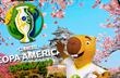 Капибара и лучшие из азиатов — что нужно знать о Копа Америка-2019
