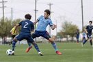 Боруссия Дортмунд подписала 16-летнего американца Рейну — AS