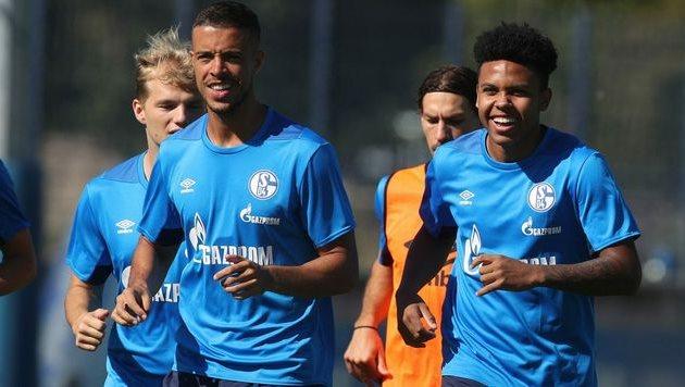 Тренировка перед матчем с Баварией, Фото ФК Шальке