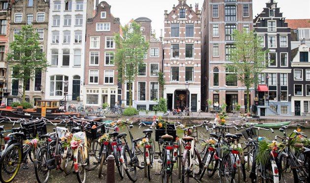 Украина — Нидерланды: заметки прямиком из Амстердама